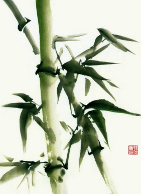 Bamboo Chinese Brush Painting