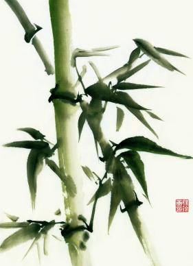 Bamboo Chinese Brush Painting