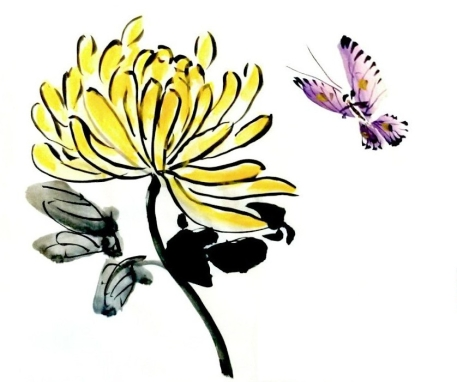 Chrysanthemum and Butterfly