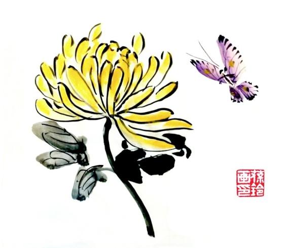 Chrysanthemum butterfly